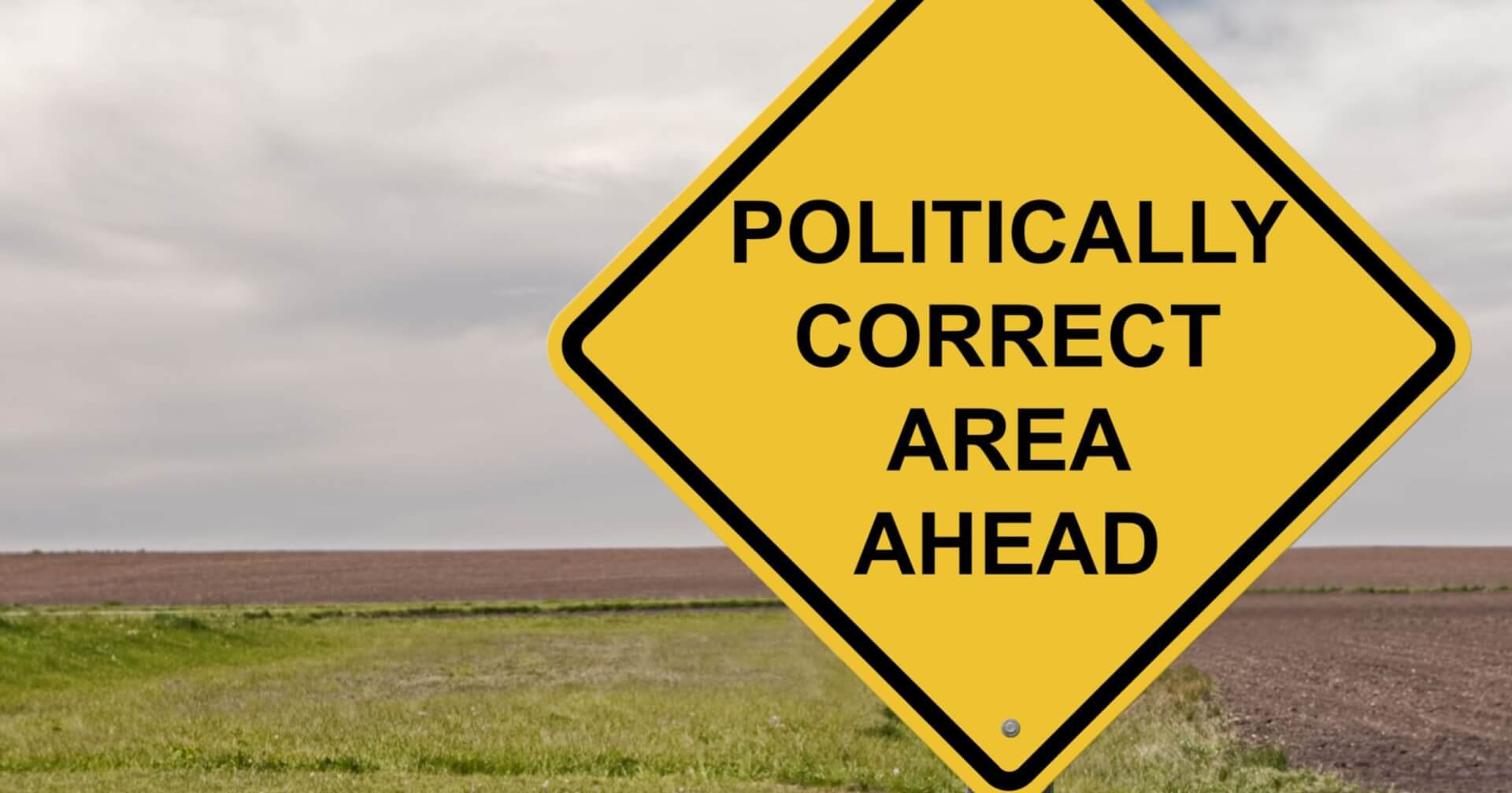 Political Correctness in the Contemporary World