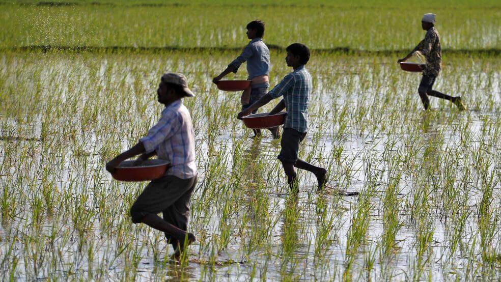 Finding Sustainable Solutions to Agrarian Distress - The Need of the Hour