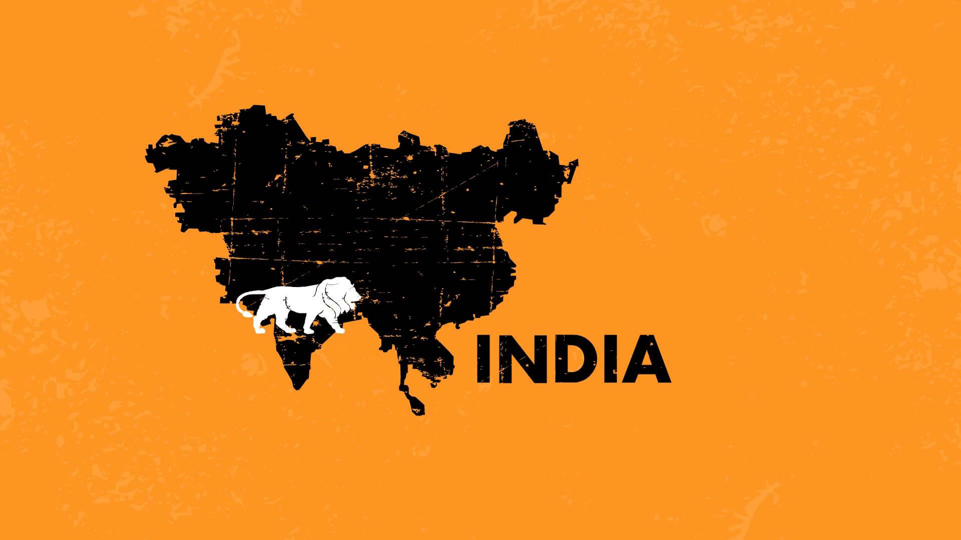 Size and Economic Role of the Indian State